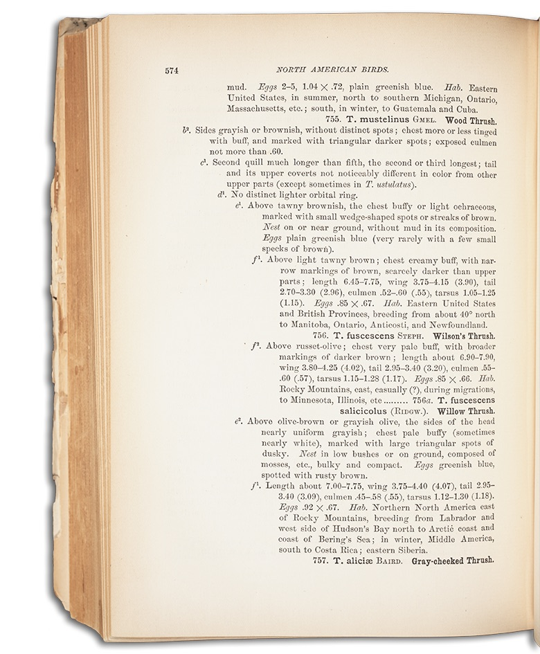 photo of a page from Ridgway, Robert's A Manual of North American Birds