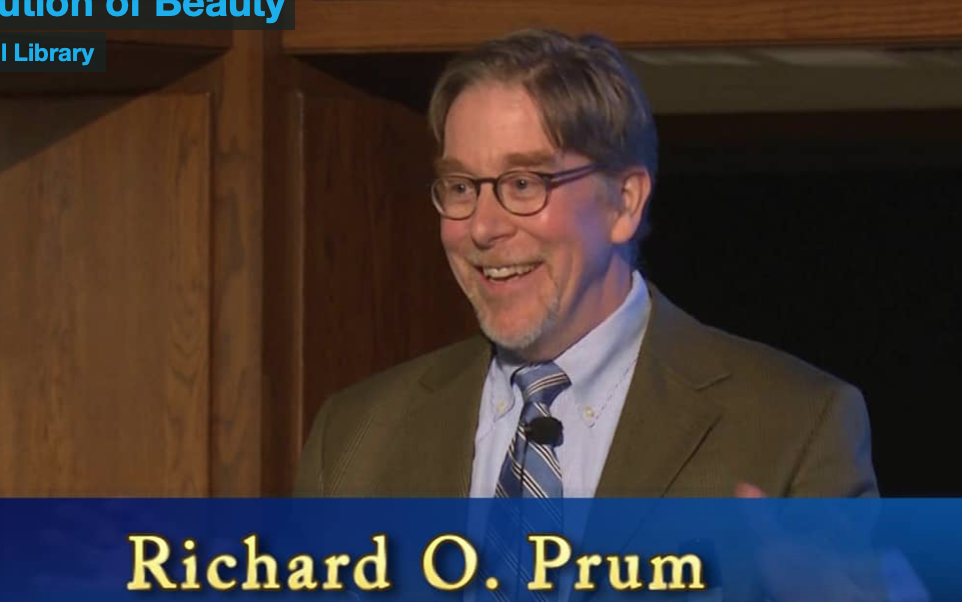 """still from Richard Prum,'s """"The Evolution of Beauty"""""""