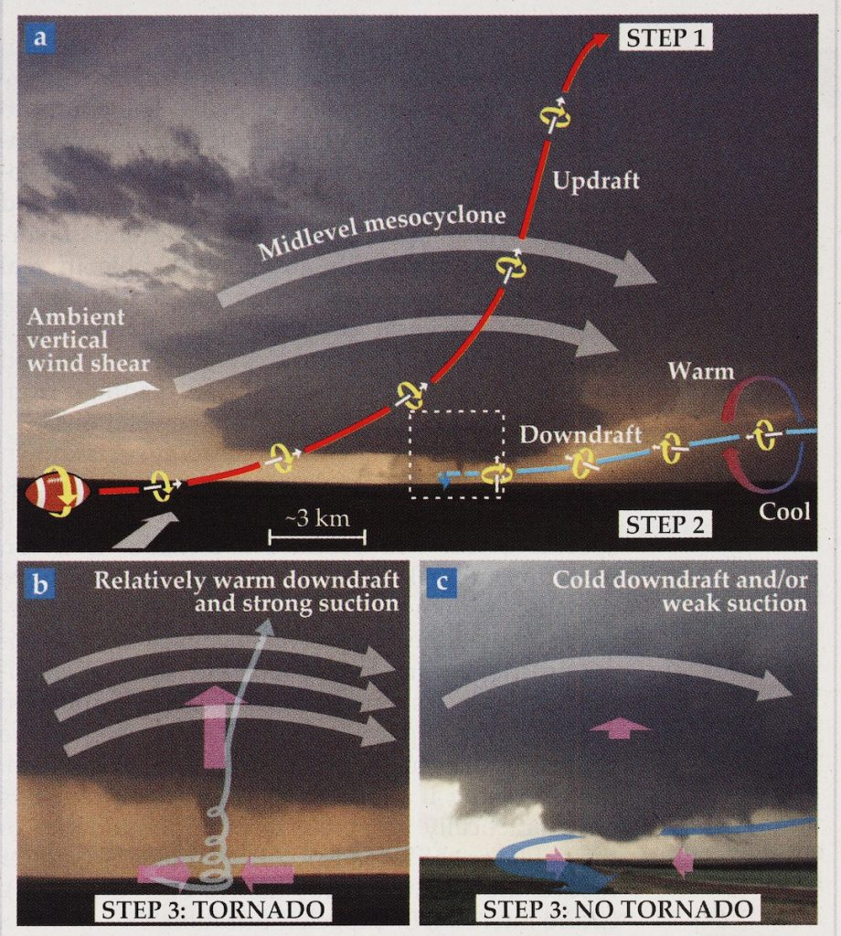 Illustration showing the steps to a tornado formation.
