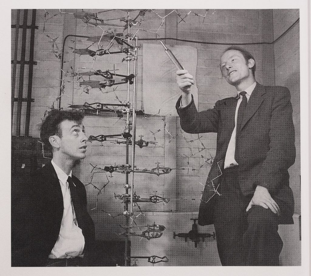 Edward. Francis Crick and James Watson and the Building Blocks of Life.